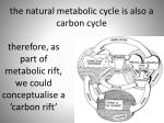 the natural metabolic cycle is also a carbon cycle