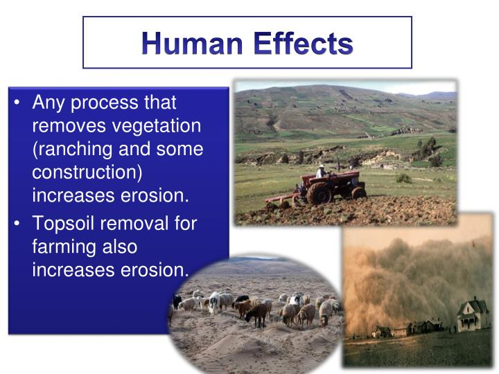 Human Effects