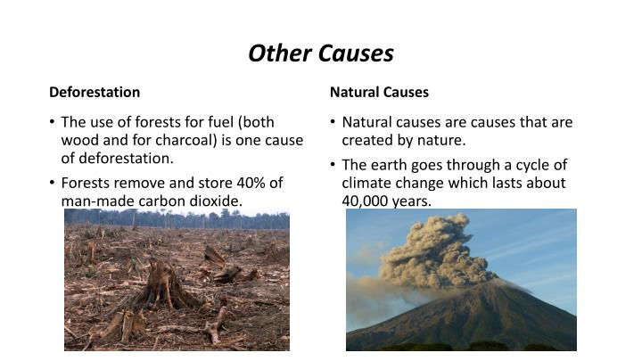 Other Causes