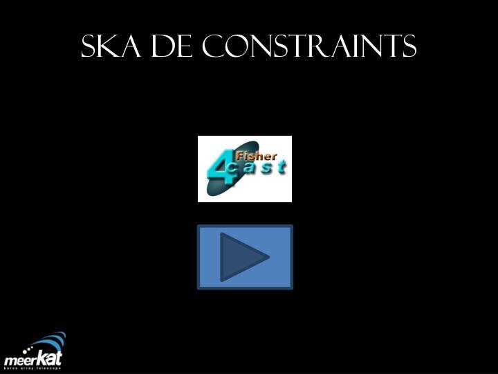 SKA DE Constraints