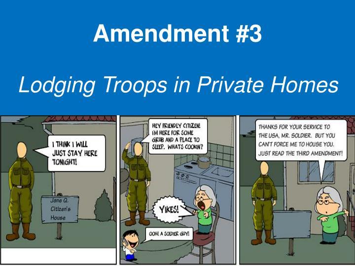 Amendment #3