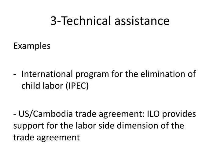 3-Technical assistance