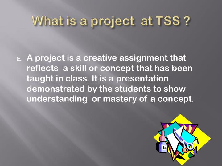 What is a project  at TSS ?