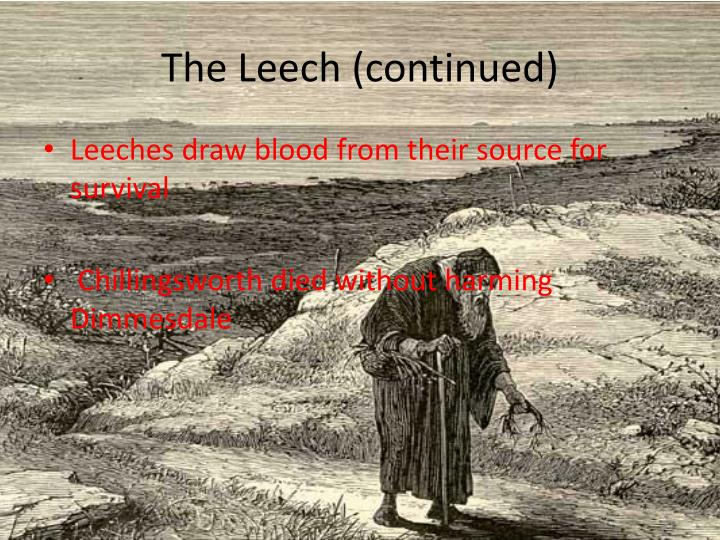 The Leech (continued)