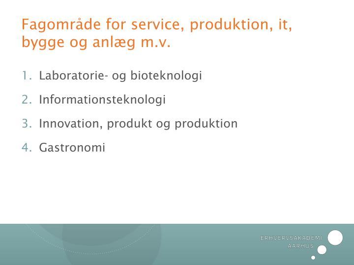 Fagområde for service, produktion, it, bygge og anlæg m.v.