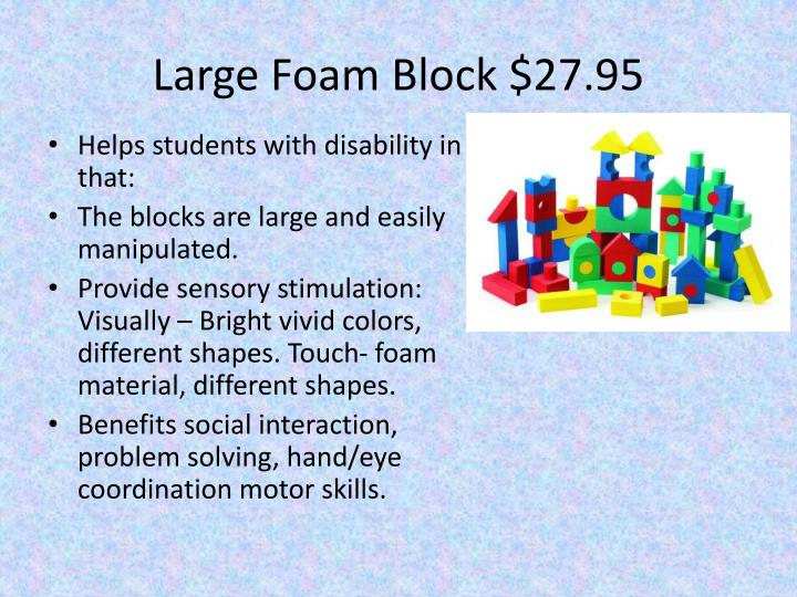 Large Foam Block $27.95