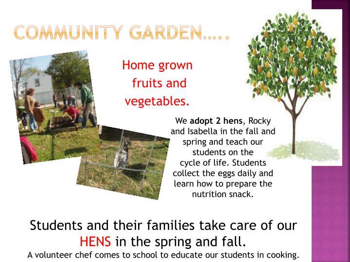 Community Garden…..