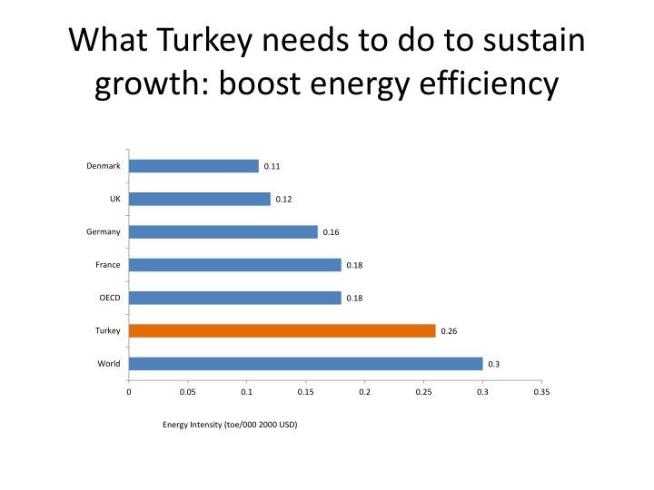 What Turkey needs to do to sustain growth: boost energy efficiency