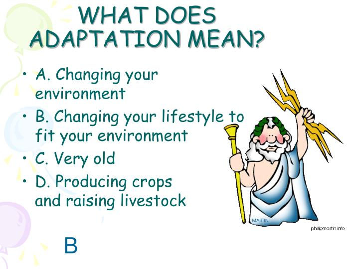WHAT DOES ADAPTATION MEAN?
