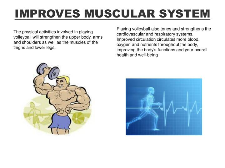 IMPROVES MUSCULAR SYSTEM