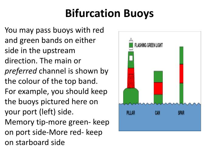 Bifurcation buoys
