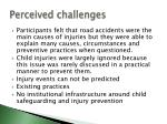 perceived challenges