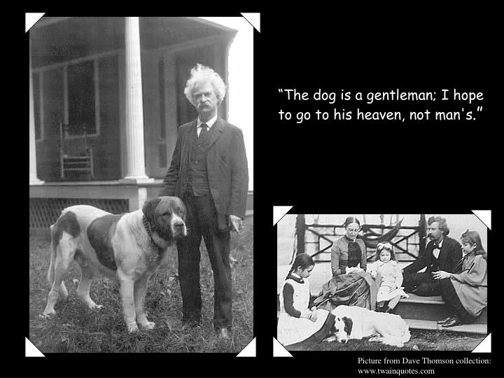 """The dog is a gentleman; I hope to go to his heaven, not man"