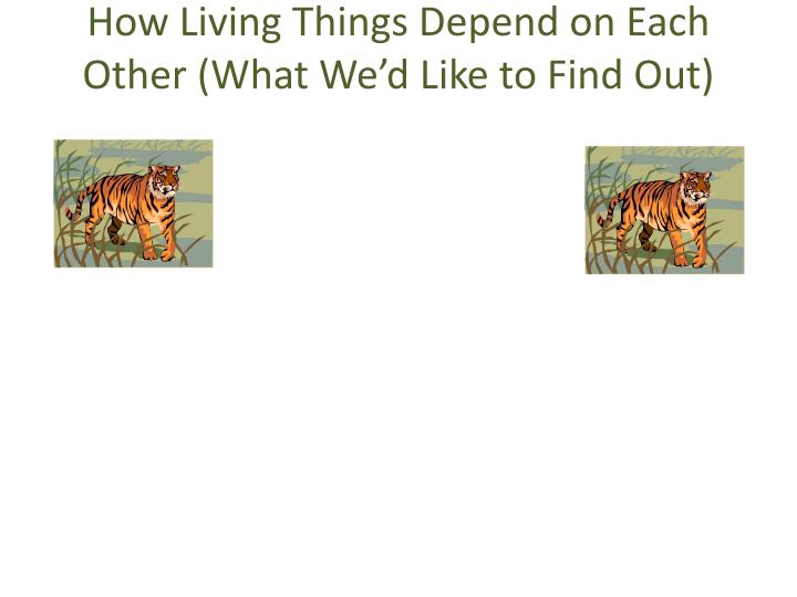 How Living Things Depend on Each Other (What We'd Like to Find Out)