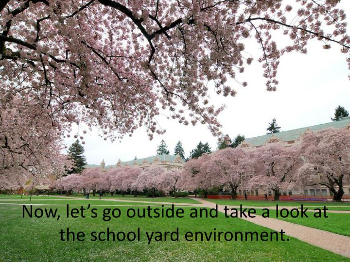 Now, let's go outside and take a look at the school yard environment.
