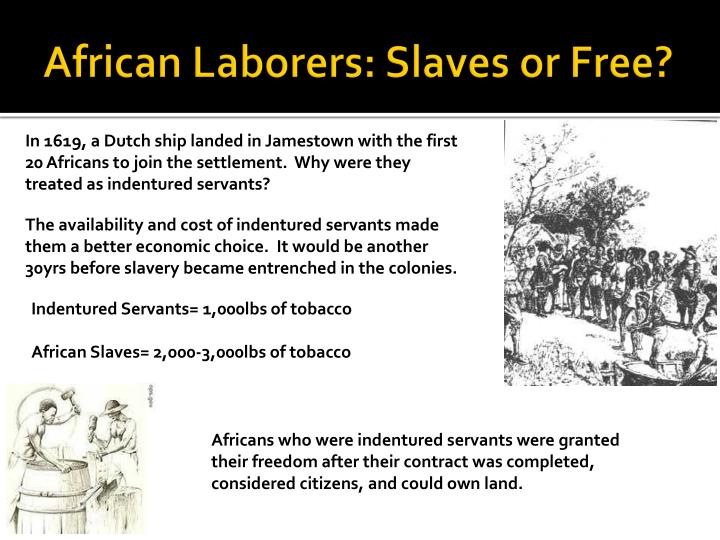 African Laborers: Slaves or Free?