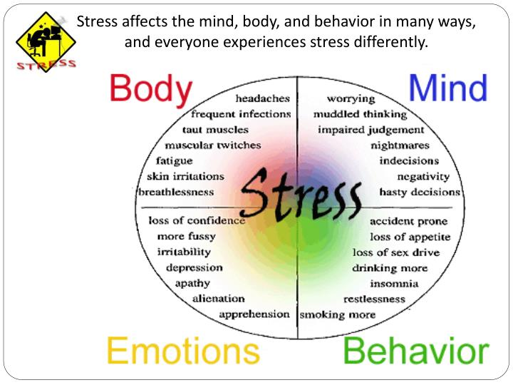 Stress affects the mind, body, and behavior in many ways, and everyone experiences stress differently.