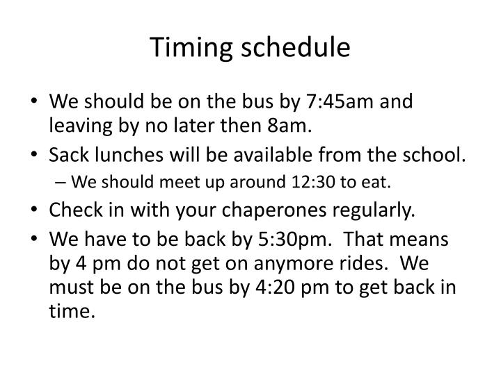 Timing schedule