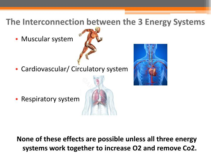 The Interconnection between the 3 Energy Systems