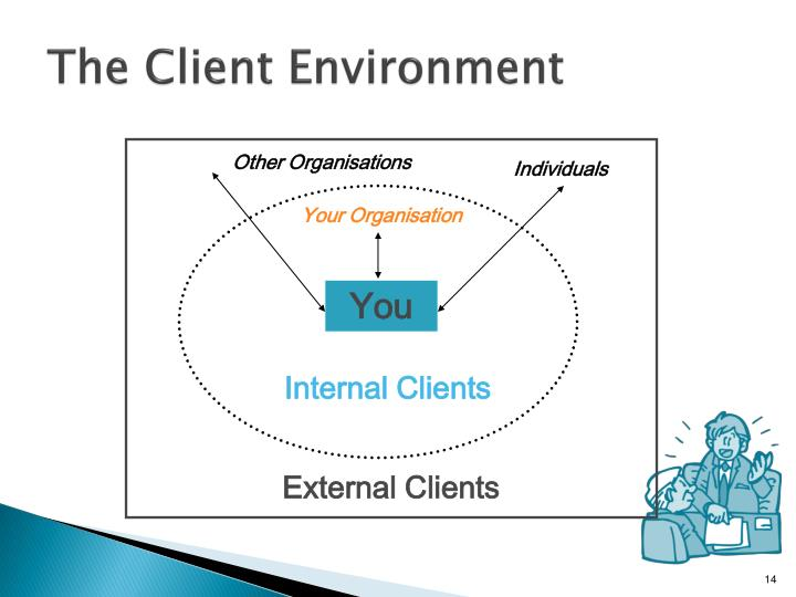 The Client Environment