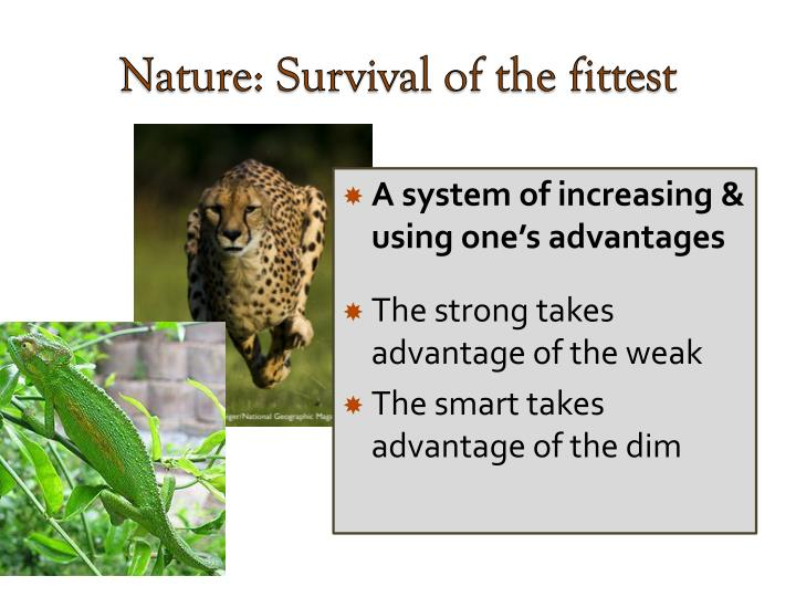 Nature: Survival of the fittest