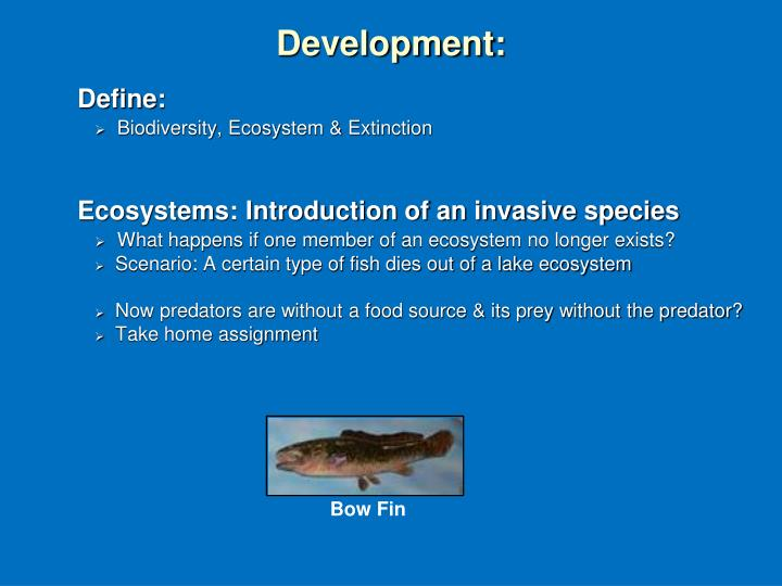 write an essay on photosynthesis and its importance in ecosystems Ecosystem is defined as a dynamic entity composed of a biological community and its associated abiotic environment often the dynamic interactions that occur within an ecosystem are numerous and complex.