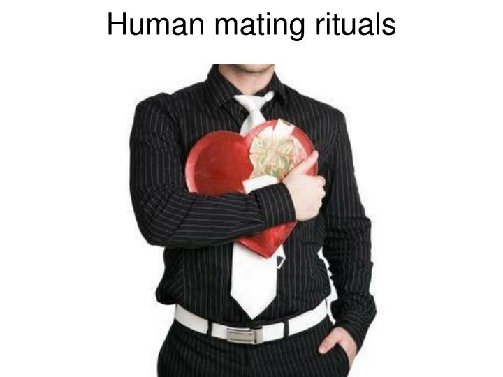 Human mating rituals