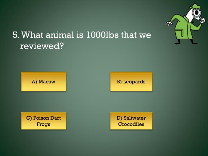 5. What animal is 1000lbs that we reviewed?