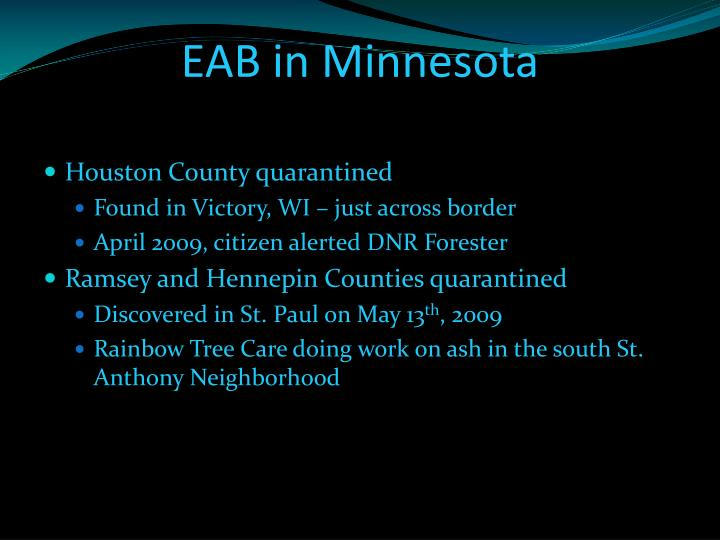 EAB in Minnesota