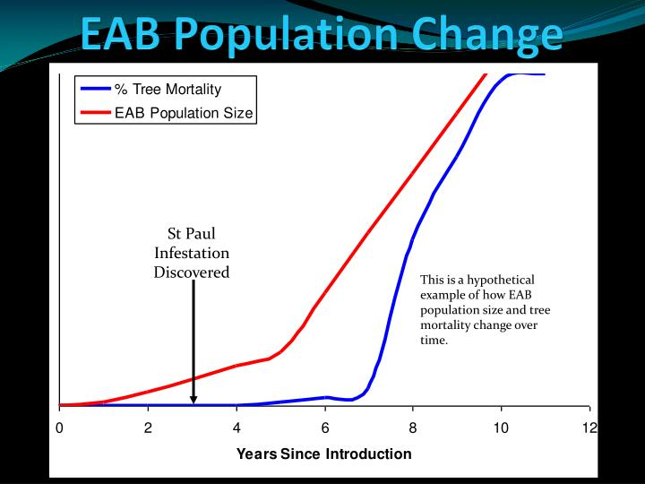EAB Population
