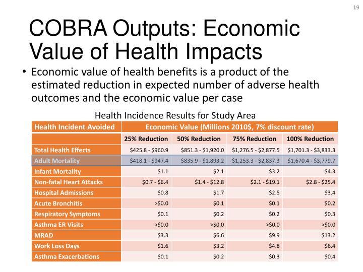COBRA Outputs: