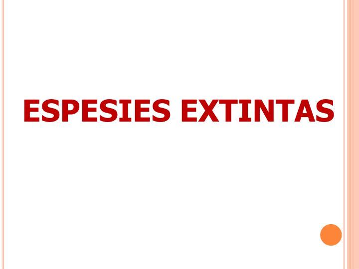 ESPESIES EXTINTAS
