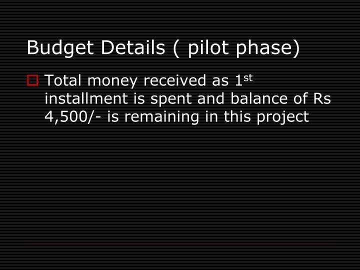 Budget Details ( pilot phase)