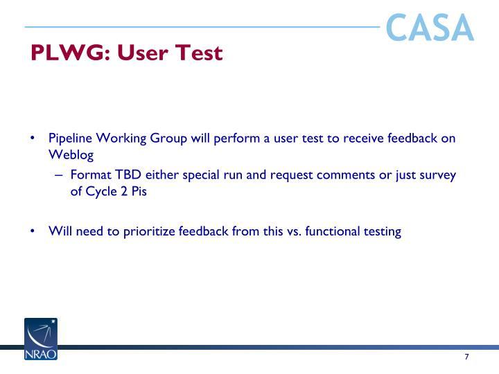 PLWG: User Test