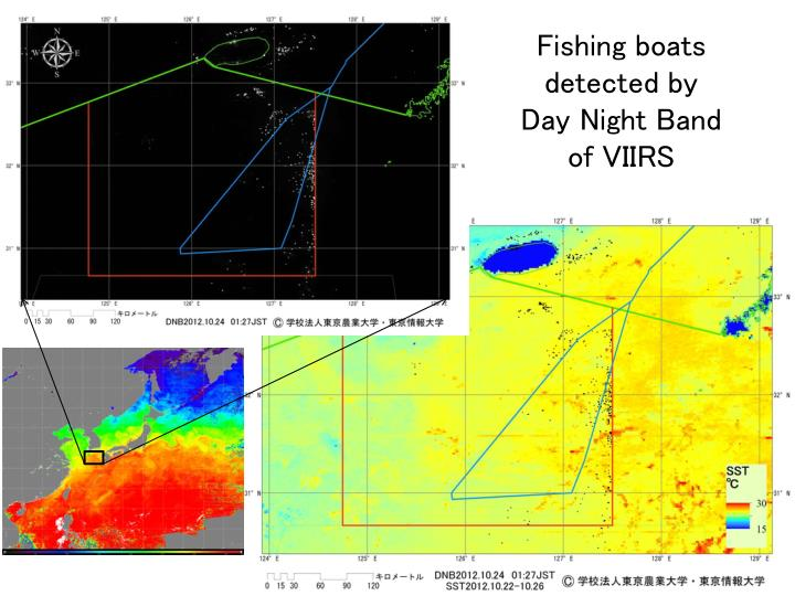 Fishing boats detected by day night band of viirs