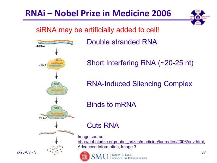 RNAi – Nobel Prize in Medicine 2006