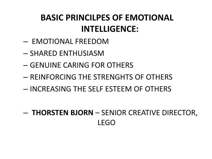 BASIC PRINCILPES OF EMOTIONAL INTELLIGENCE: