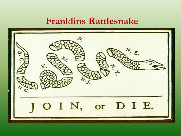 Franklins Rattlesnake