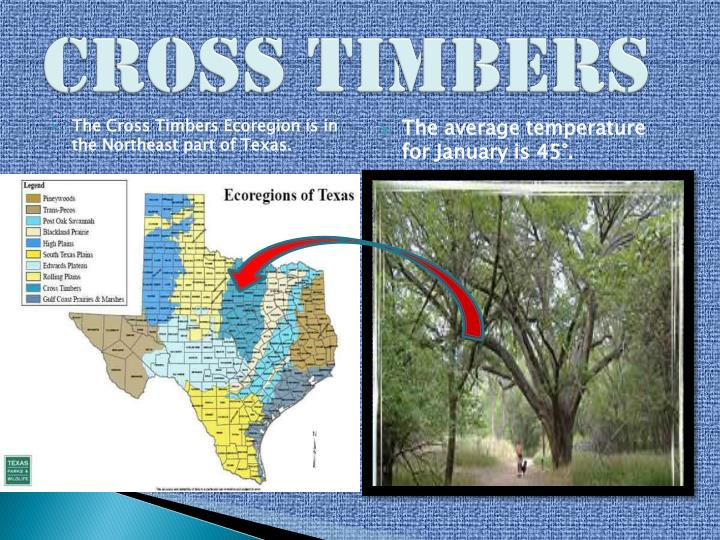 Cross Timbers