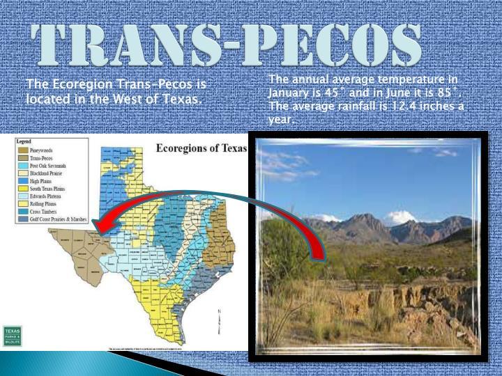 Trans-Pecos