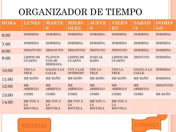 ORGANIZADOR DE TIEMPO