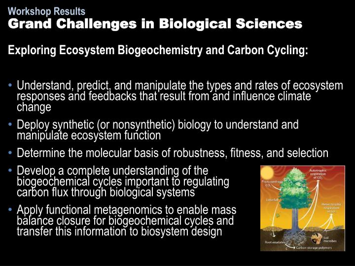 Grand Challenges in Biological Sciences