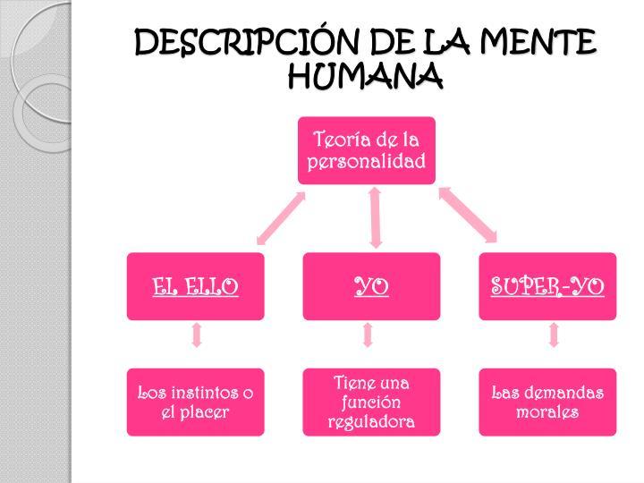 DESCRIPCIÓN DE LA MENTE HUMANA