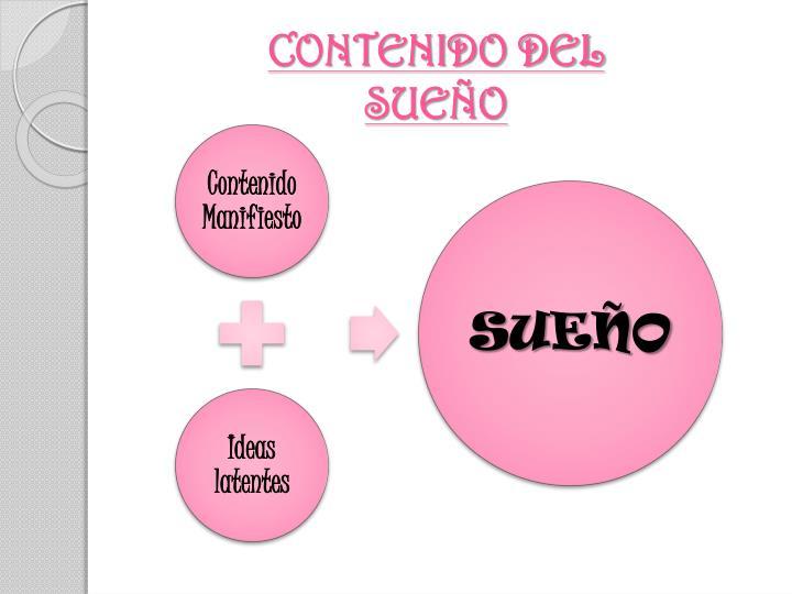 CONTENIDO DEL SUEÑO