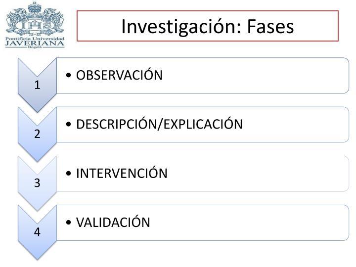 Investigación: Fases