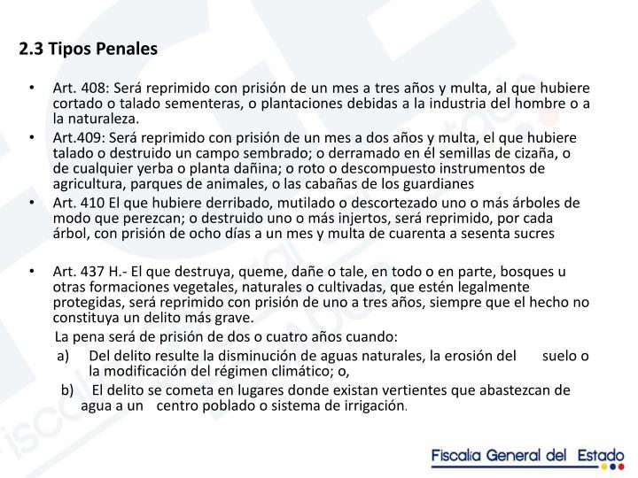 2.3 Tipos Penales