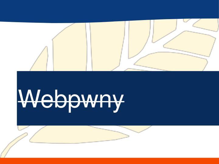 Webpwny