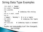string data type examples