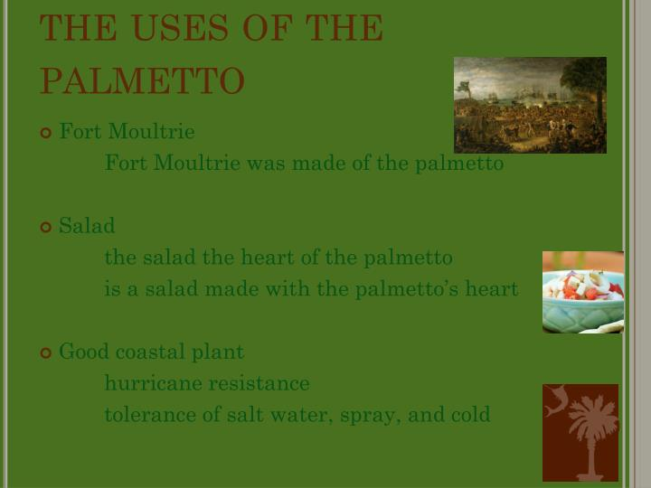 The uses of the palmetto