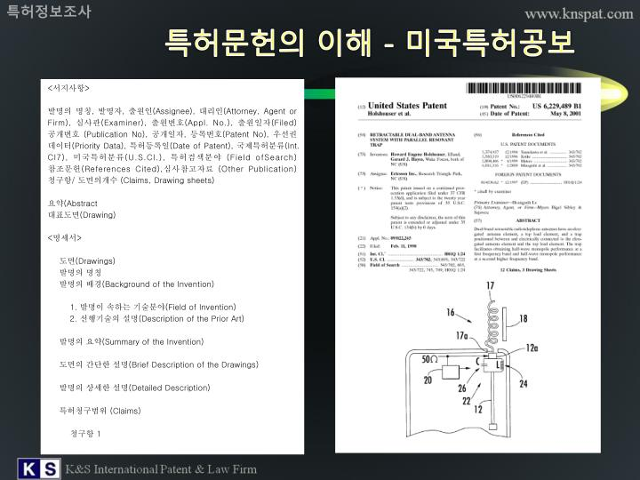 특허정보조사